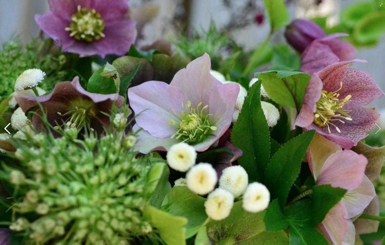 container-garden-designer-botanic-richmond-va.jpg