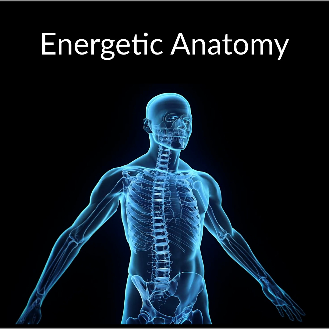 energeticanatomy_3_original.jpg