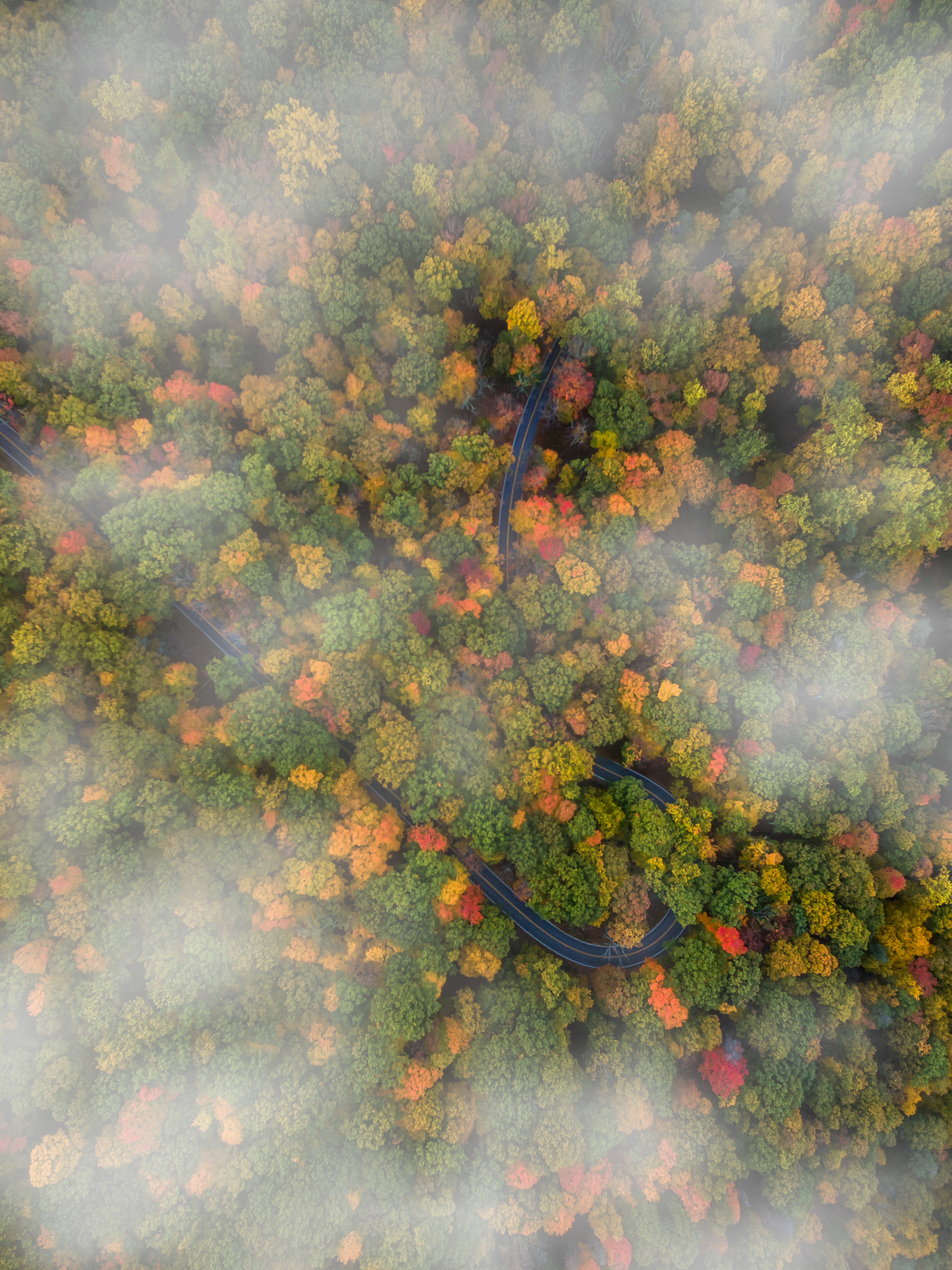 Arden Valley Fall-1.jpg