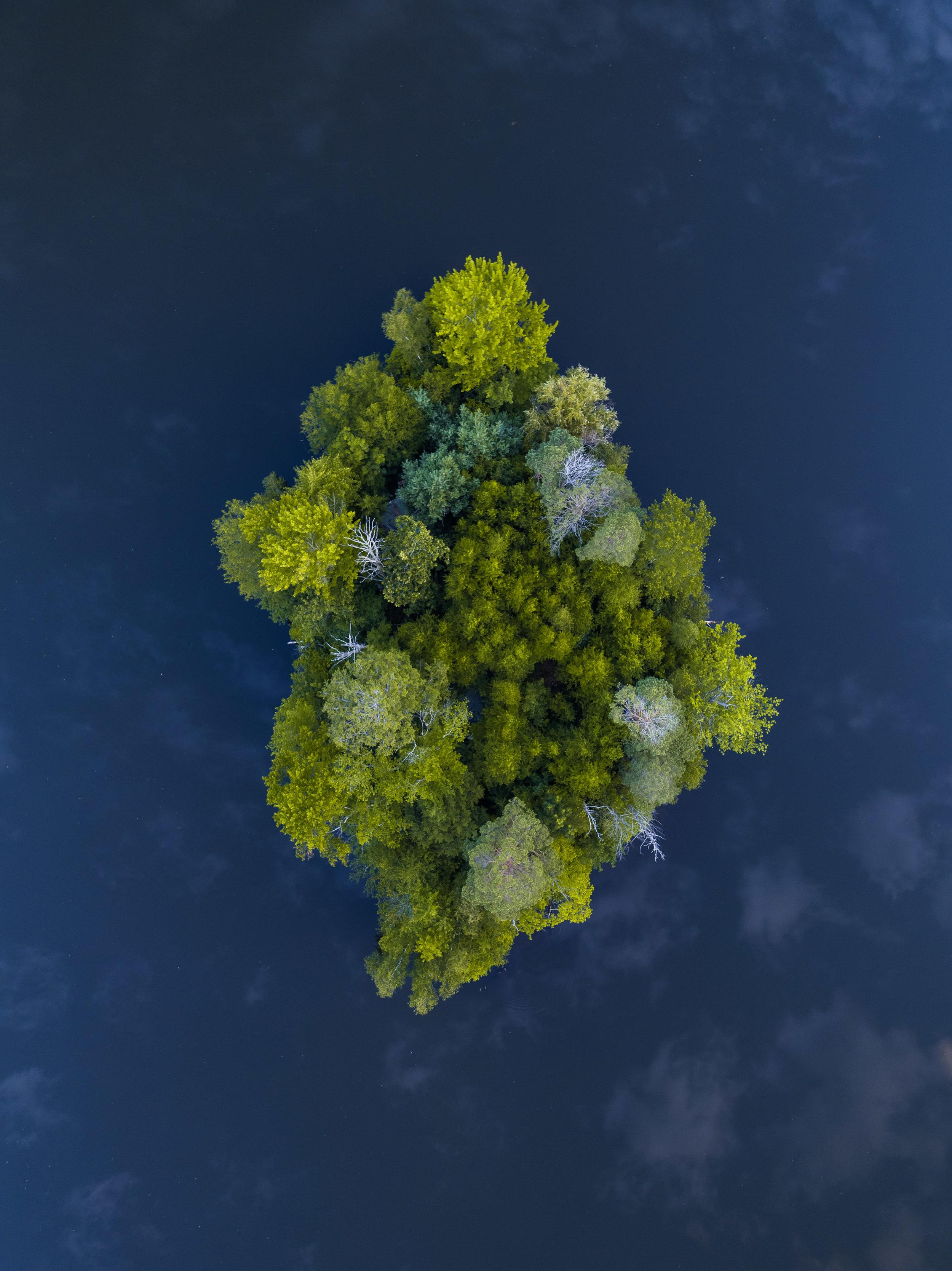 harrisonisland_typoland_aerial-1 copy.jpg