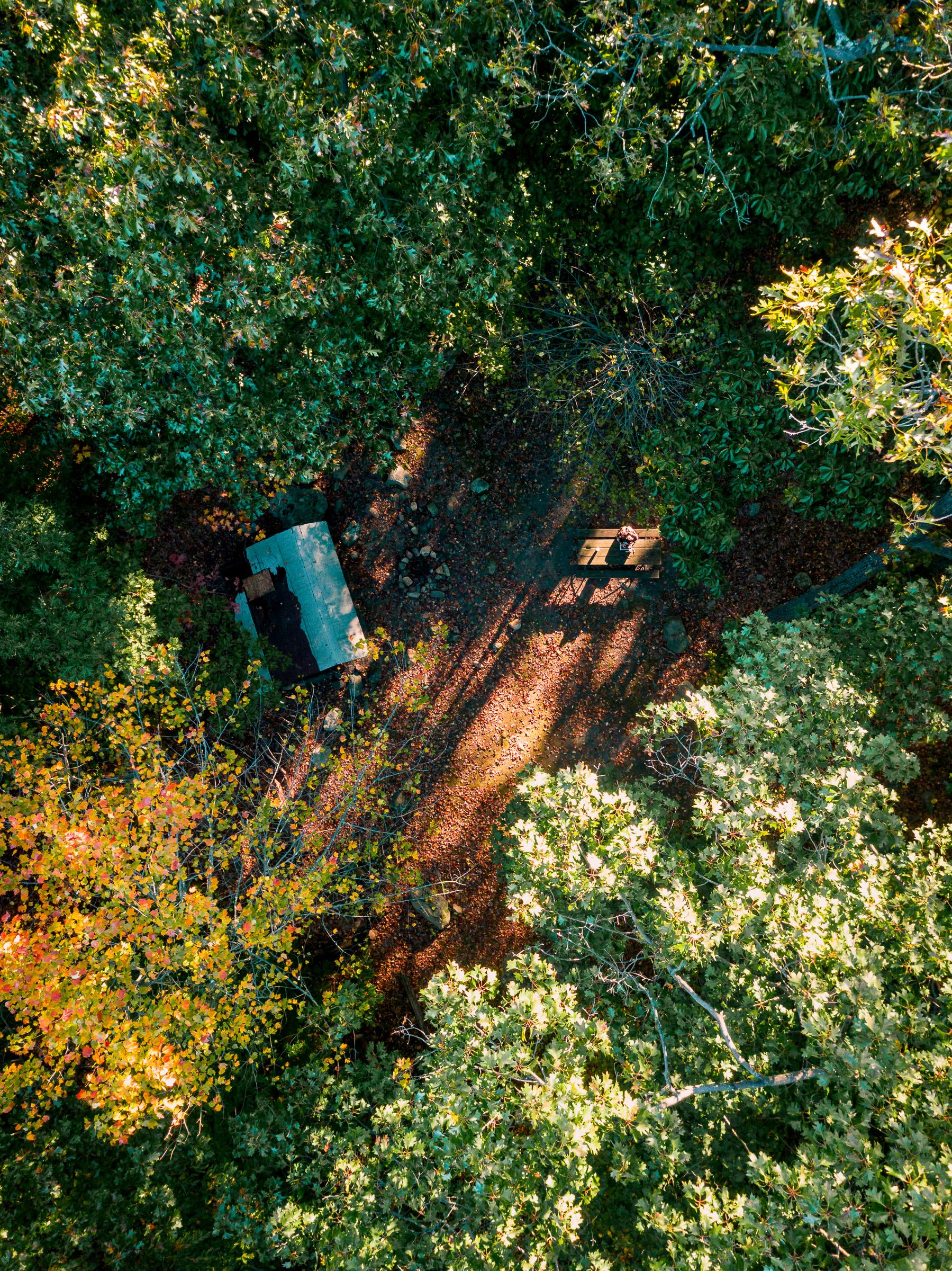 officeinthewoods_typoland_aerial-1.jpg