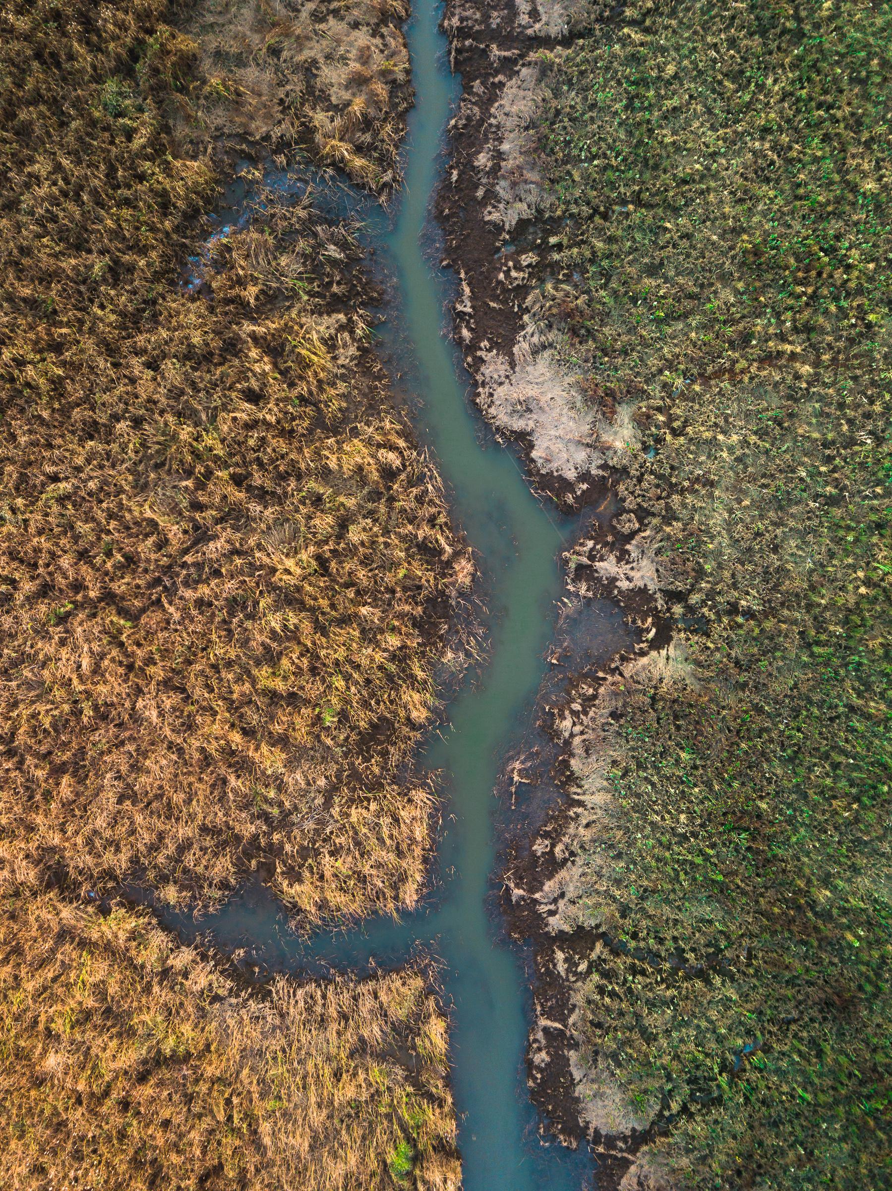 yellowandgreen_typoland_aerial-1.jpg