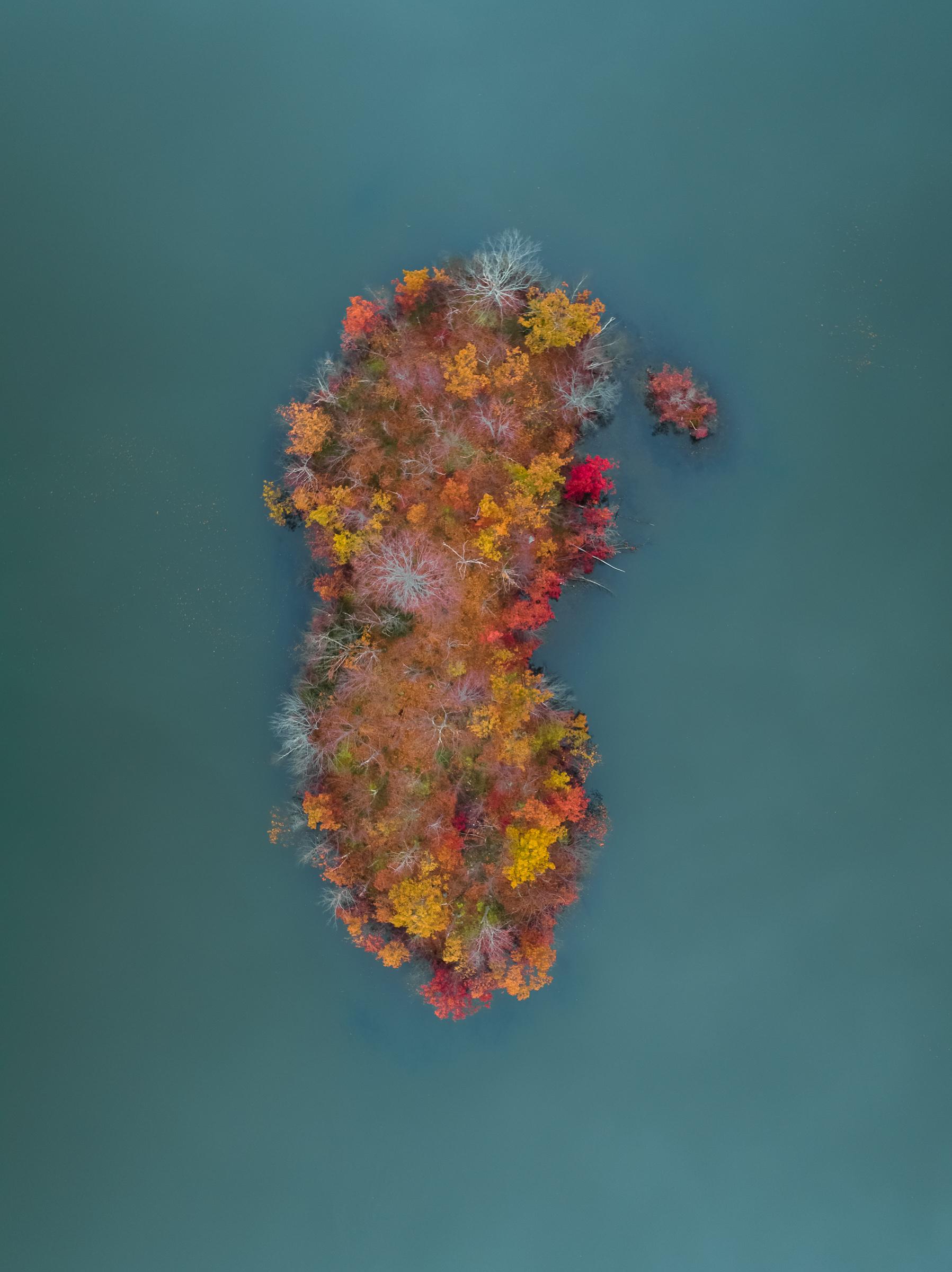 colorisland_typoland_aerial.jpg