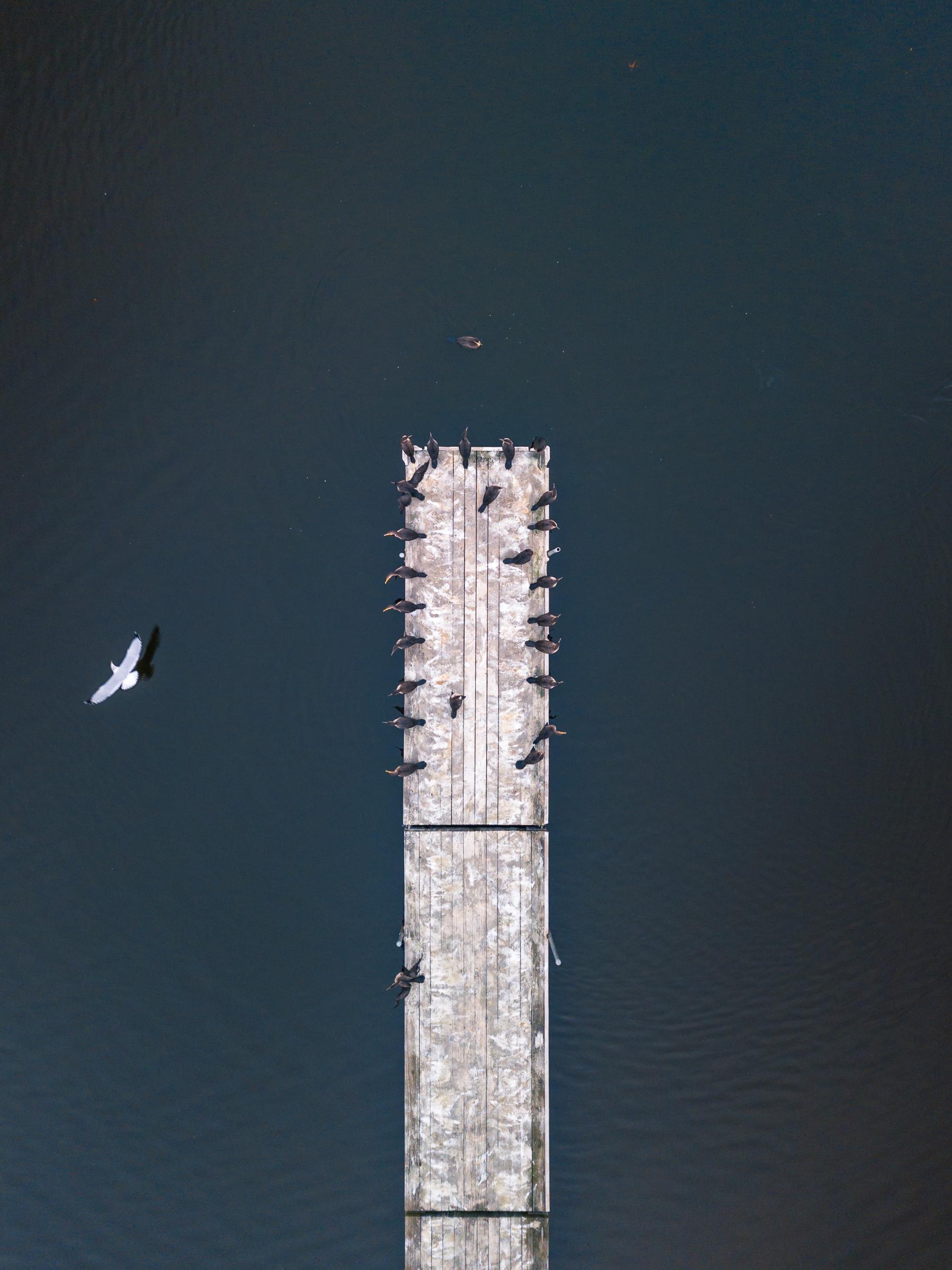 oneofakind_typoland_aerial.jpg