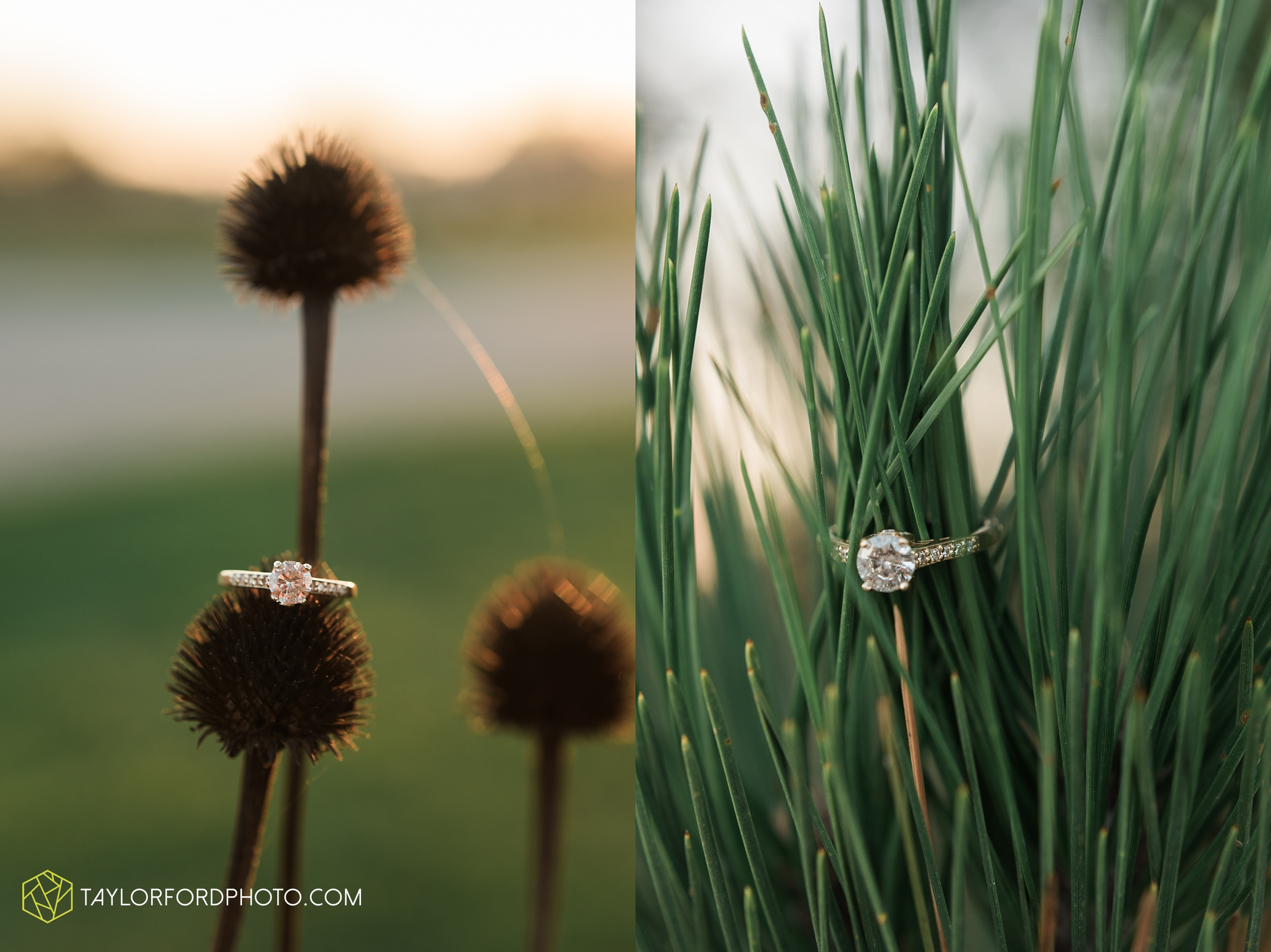 fort-wayne-indiana-engagement-wedding-photographer-Taylor-Ford-Photography-salomon-farm-park_3588.jpg