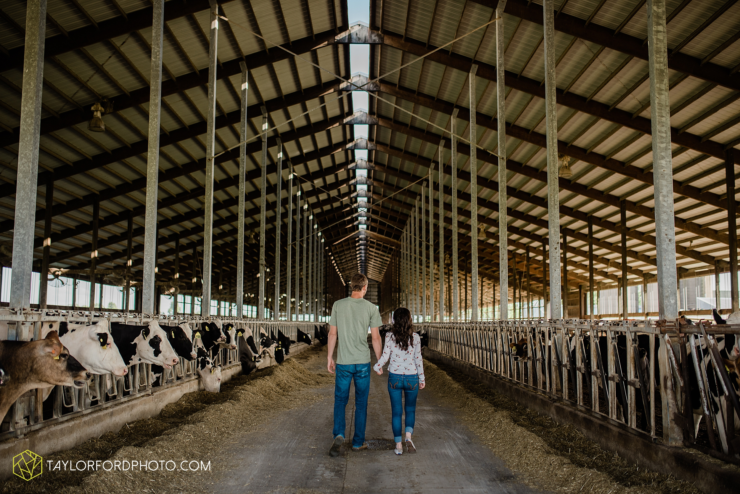 celina-mercer-county-ohio-farm-woods-engagement-photographer-photography-taylor-ford-hirschy-photographer_2982.jpg