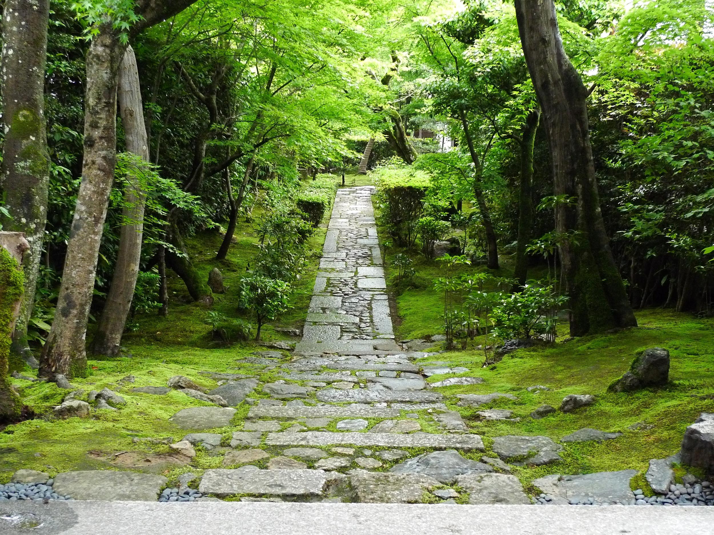 zen-and-the-art-of-piano-david-michael-wolff-zen-path