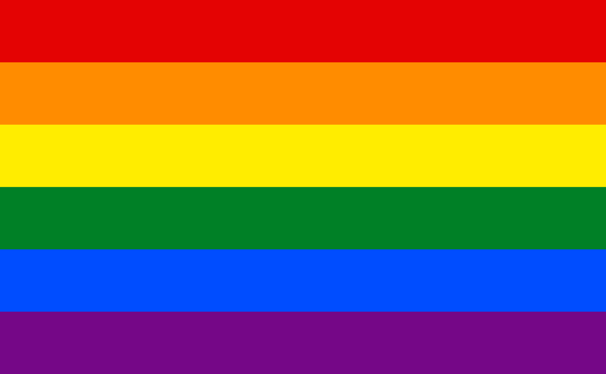 A rainbow flag representing LGBTQ+.