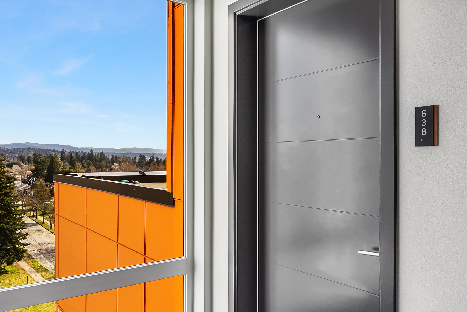 Unit Door