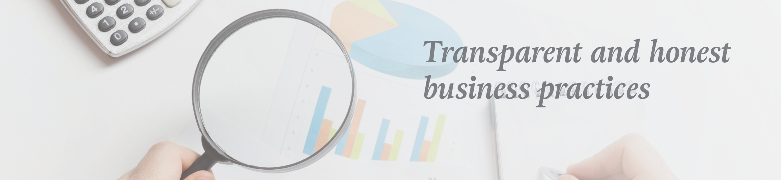 Transparent Investment Oppurtunities