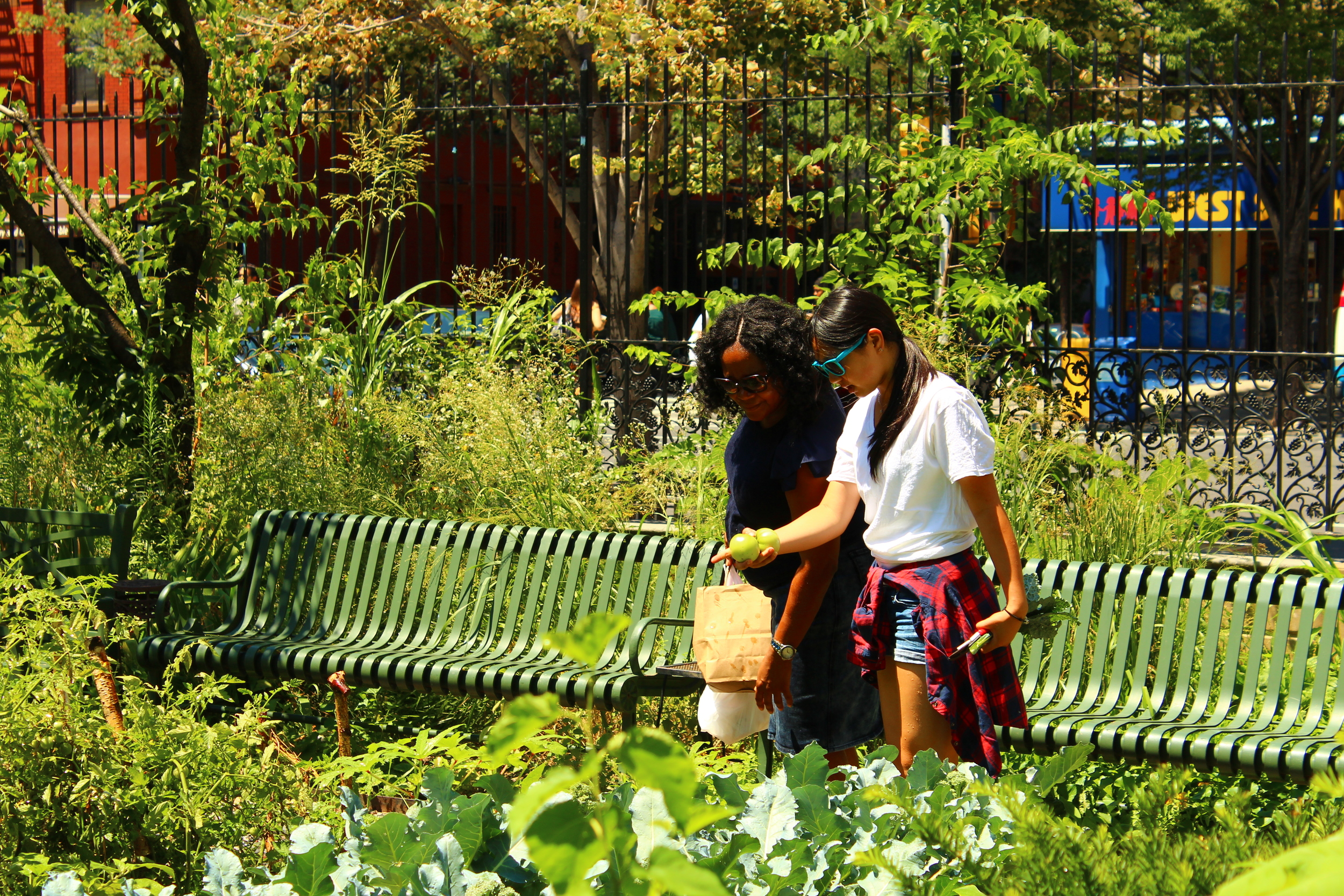 Sophomore Winnie Zhu discusses the harvest with a member of the community