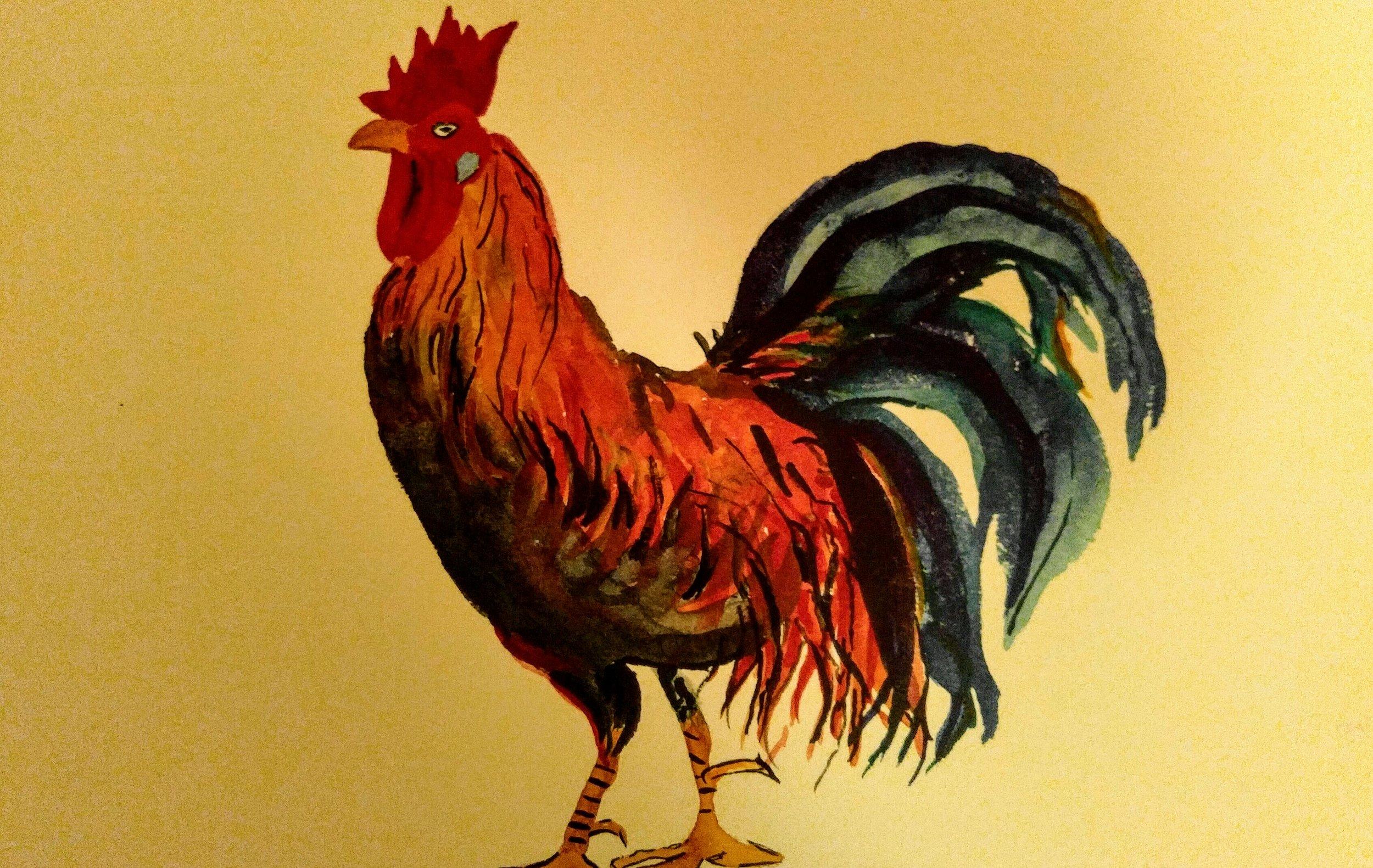 Julie's Rooster