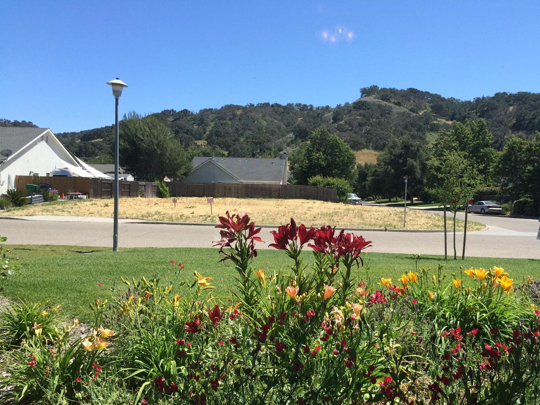 711_Hill_Street_Los_Alamos_CA_frontyard.jpg