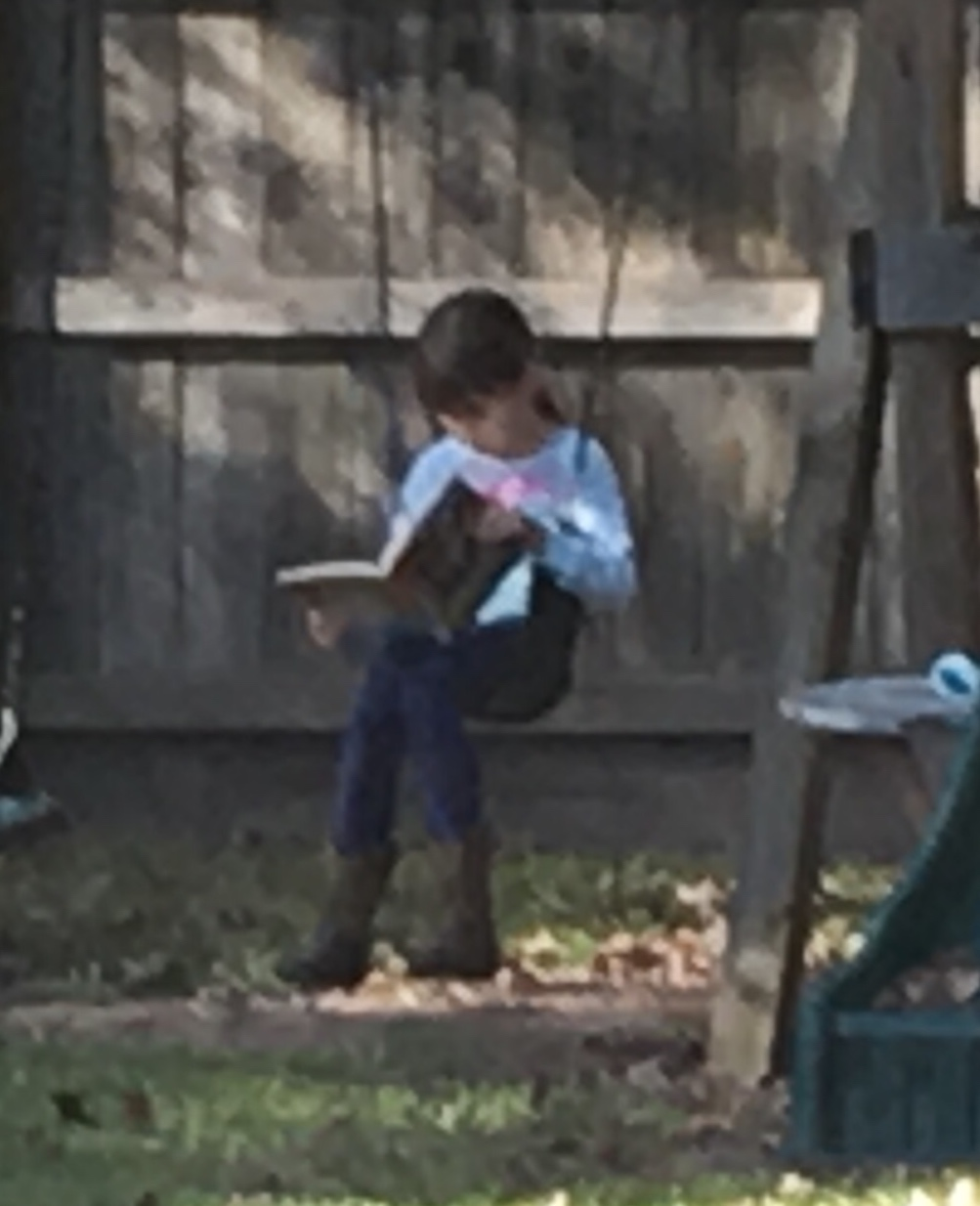 Much of our school work is done outdoors when the weather is nice. Why not? That is one of our joys in home educating!