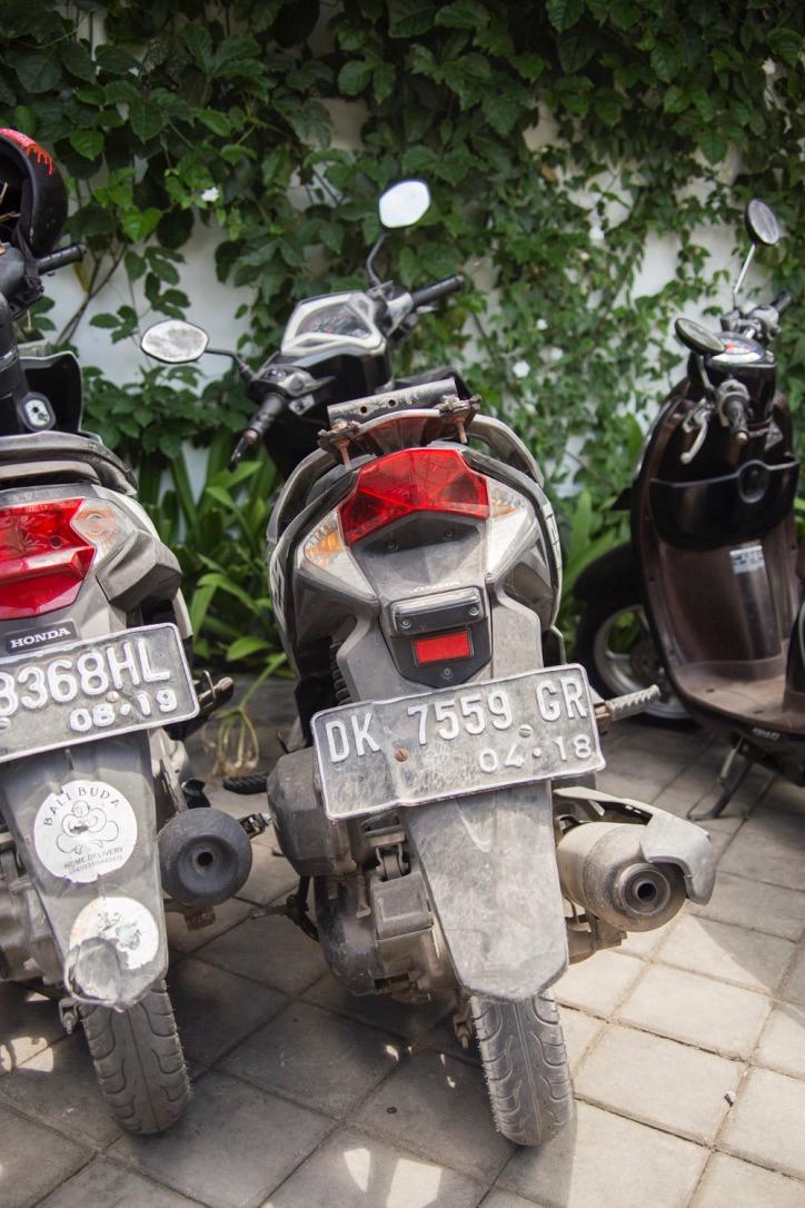 Bali+-+34.jpg
