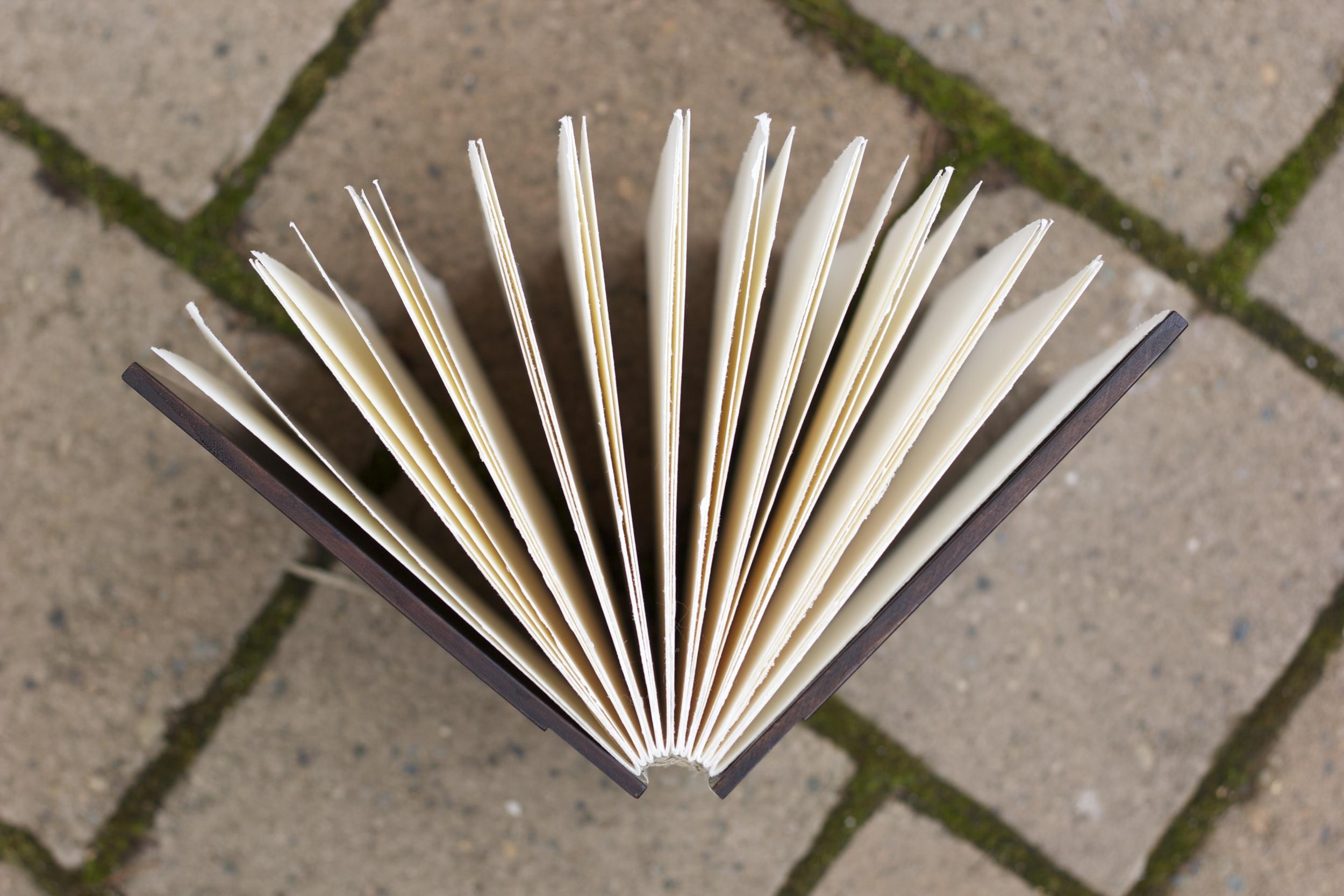 Kickstarter project. Wood-cover journal.2013.