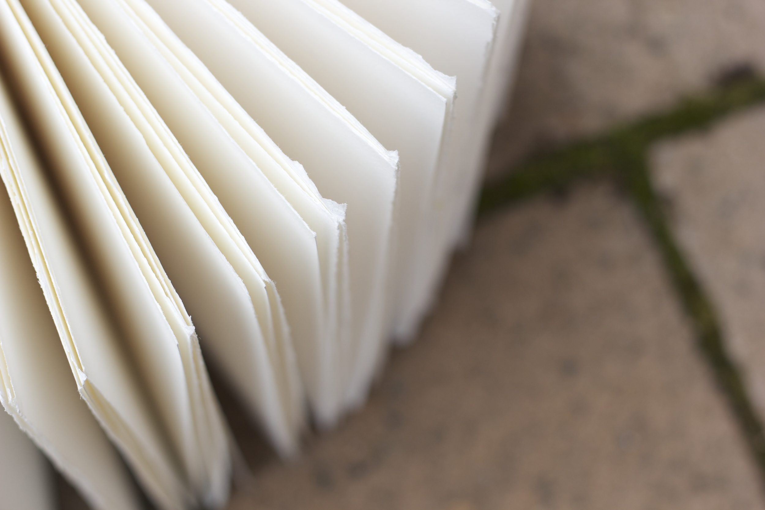 Kickstarter project. Watercolor pages of wood-cover journal. 2013.