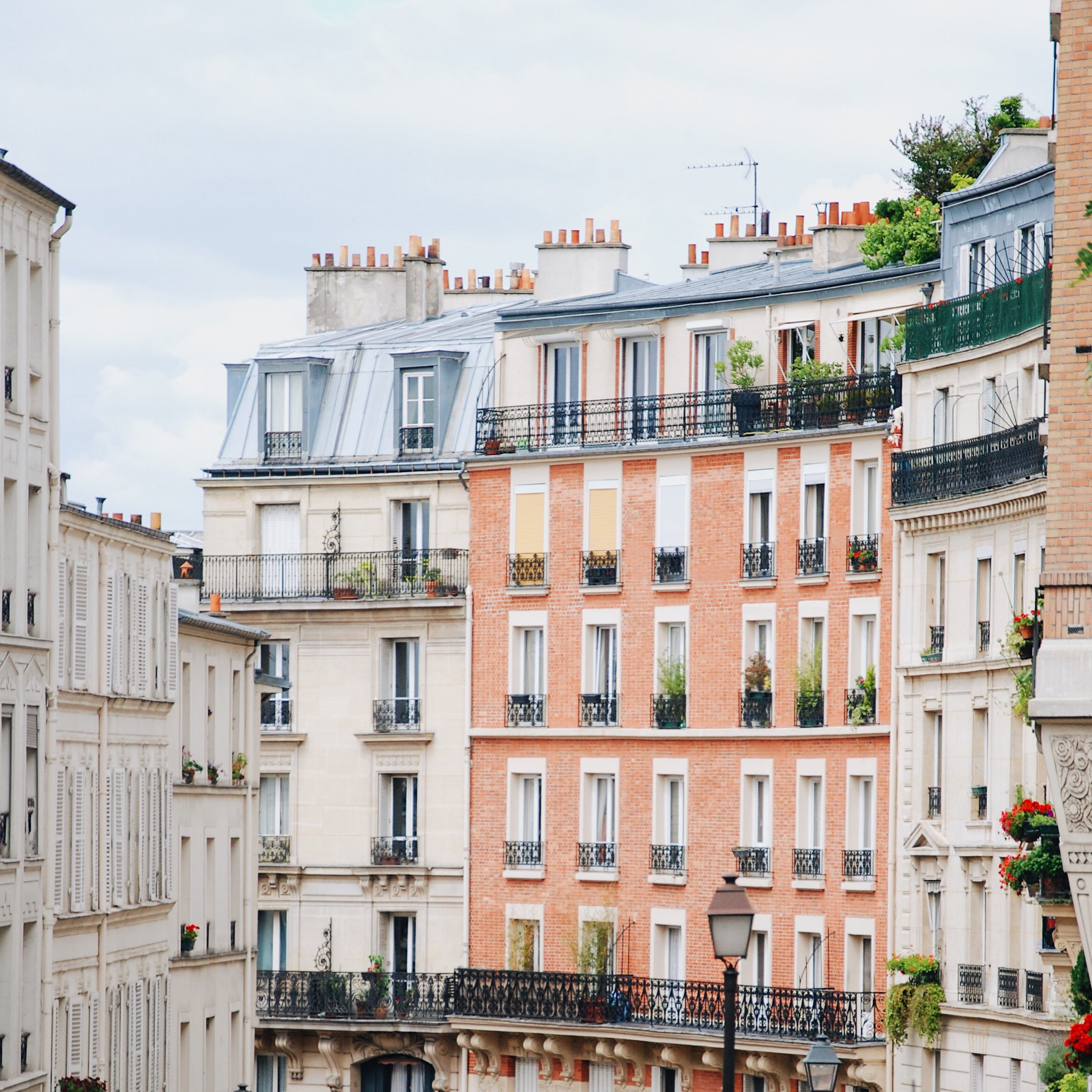 Paris is famous for its zinc roofs, which weather into a gorgeous patina and can last for centuries. Photo by VB Fetter, Unsplash.