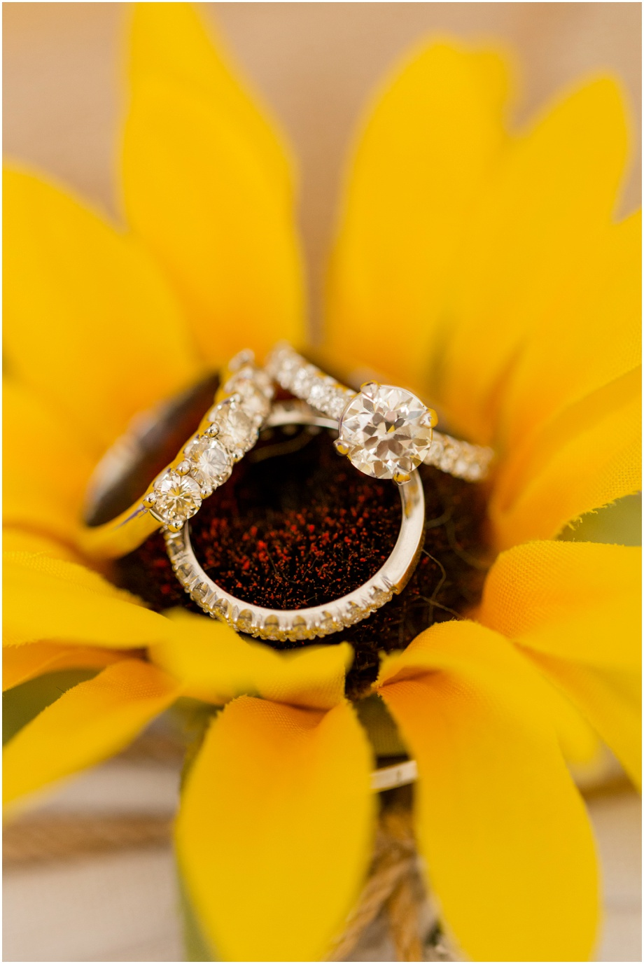 Glen-Ivy-Wedding-Wedgewood+Wedding+Photographer