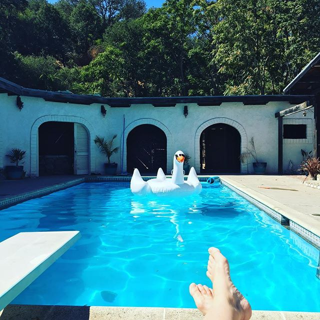 Perfect Sunday!! 🏊⛱🍾 #Sunday #pool #swan #sundayfunday #swimming #pasorobles #cabanalife #everyonesgottahaveaswanintheiife