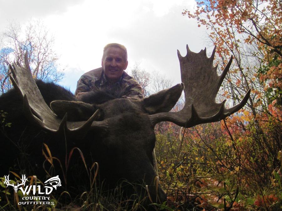 utah archery shiras moose.jpg