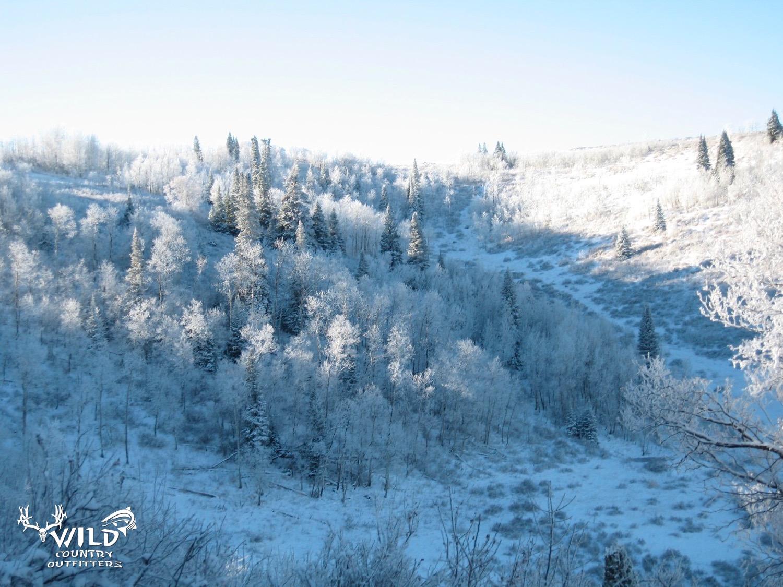 deseret ranch fall snow hunting.jpg