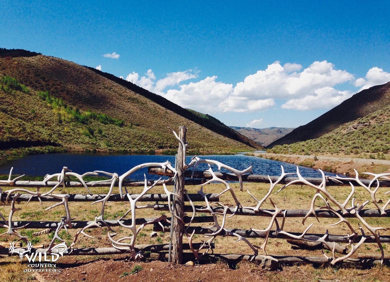 deseret ranch elk deer sheds fish camp.jpg