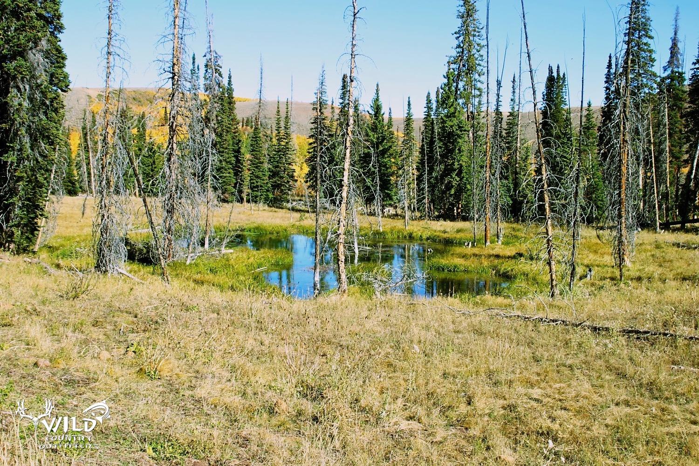 Deseret ranch little yellowstone rocky mountains utah.jpg