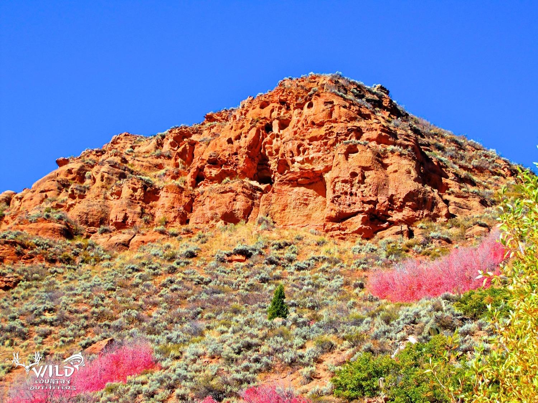 deseret ranch red maples red cliffs utah.jpg