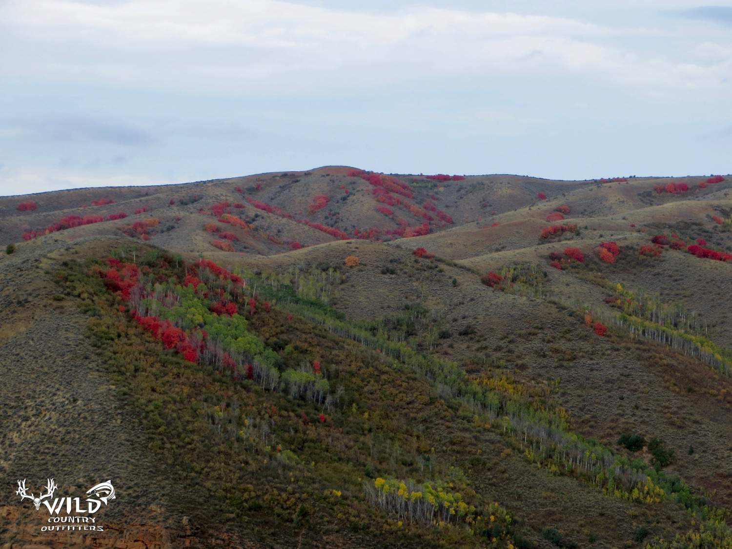 deseret ranch rocky mountains utah red maples.jpg