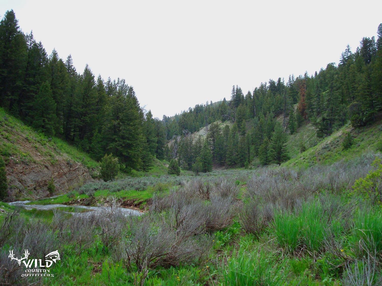 lost creek utah wilderness (1).jpg