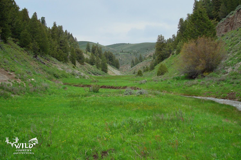 lost creek utah wilderness.jpg