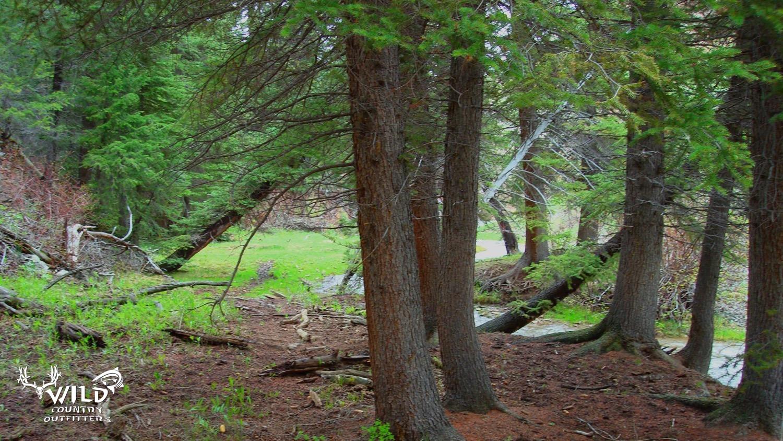 Lost Creek wilderness 4.jpg