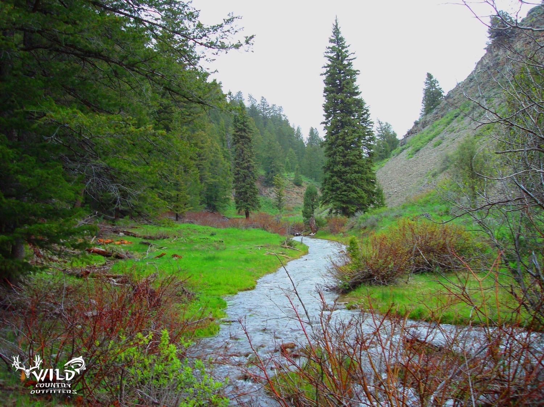 lost creek wilderness utah.jpg
