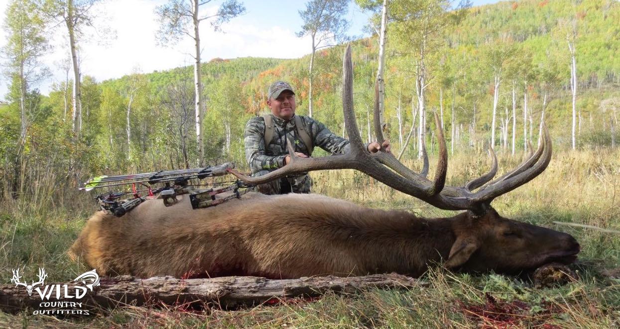 utah archery bull elk hunt chris paradise mossy oak.jpg