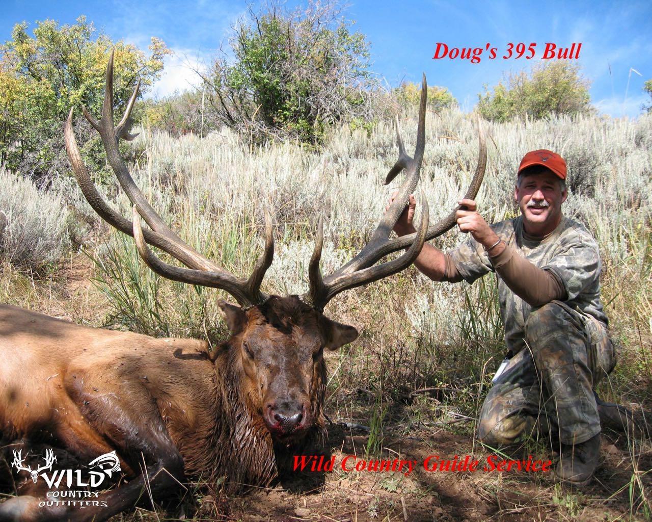 utah bull elk rifle hunt 395.jpg