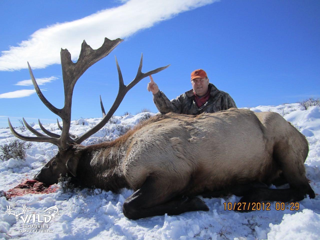 utah bull elk rifle hunt non typical freak bull.jpg