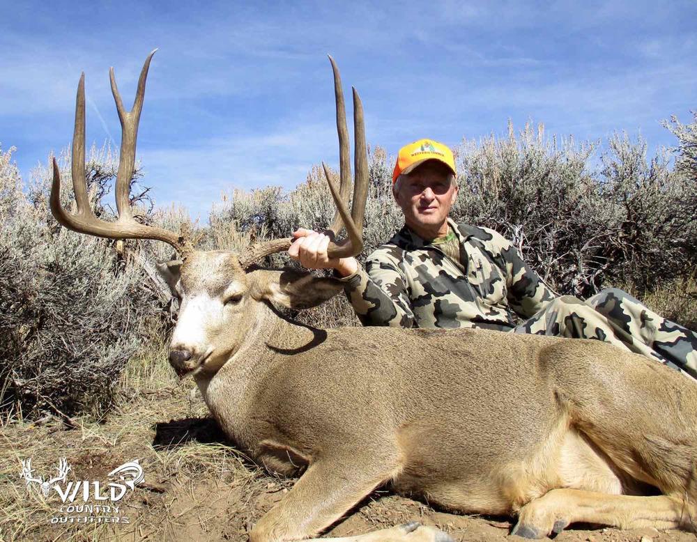 utah+buck+mule+deer+hunt+2015.jpg