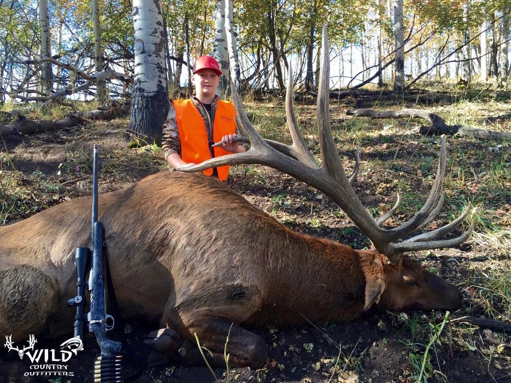 utah+bull+elk+hunt+rocky+mountains+2015+-+4.jpg