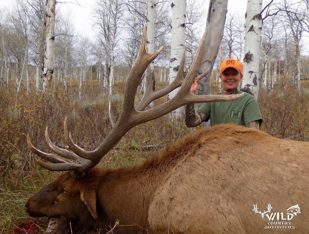 utah+bull+elk+hunt+rocky+mountains+2015+-+11.jpg