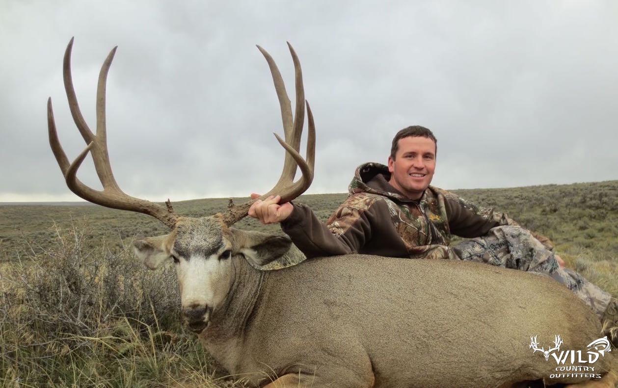 utah buck mule deer hunt (6).jpg