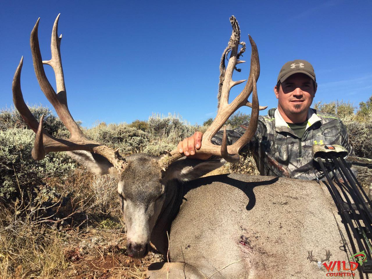 utah mule deer hunt 2016 archery (4).jpg