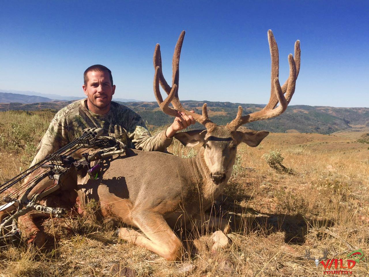 utah mule deer hunt 2016 archery (3).jpg