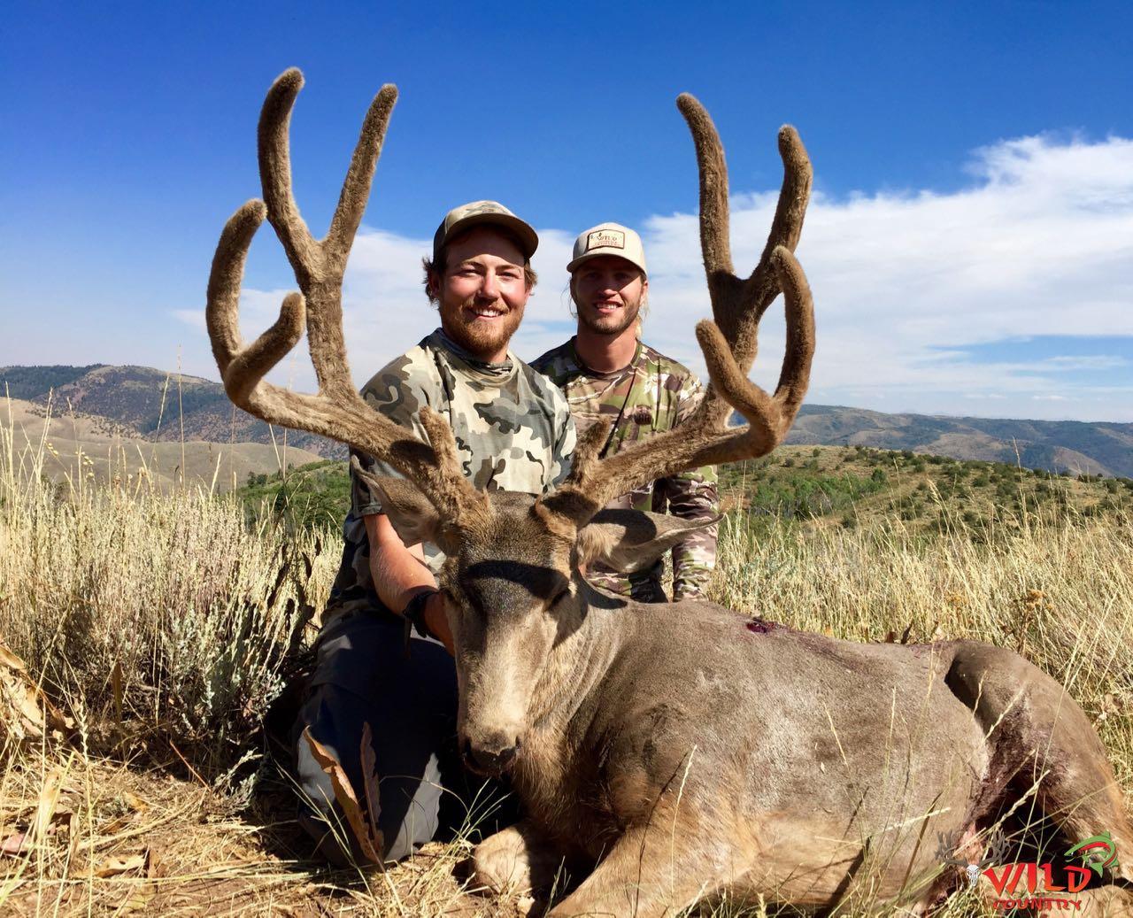 utah mule deer hunt 2016 archery.jpg