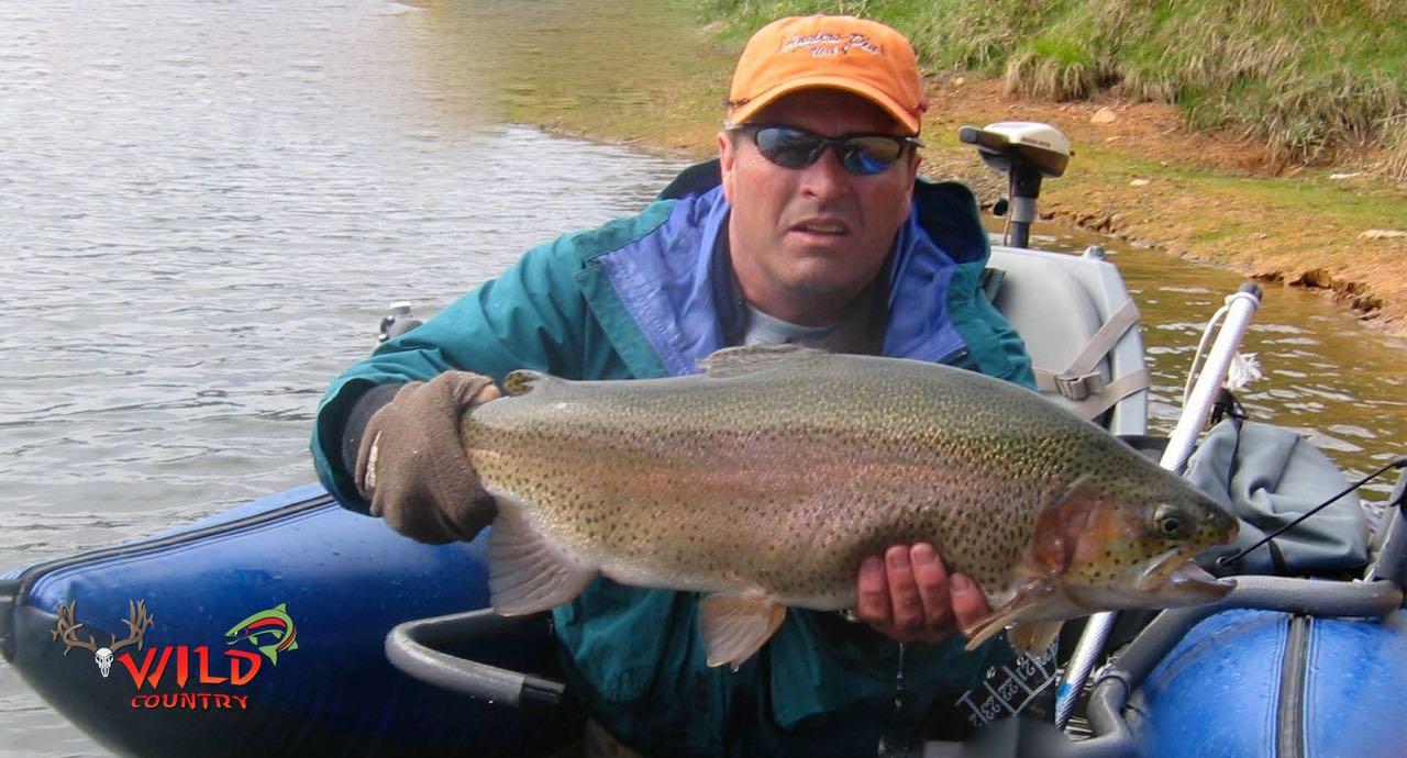 fly fishing utah rainbow trout - 4.jpg