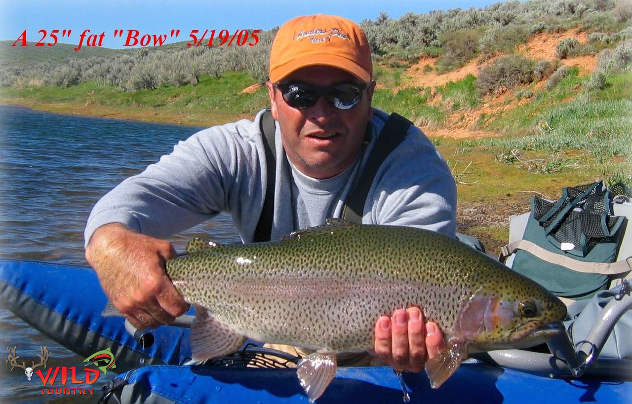 fly fishing utah rainbow trout - 14.jpg