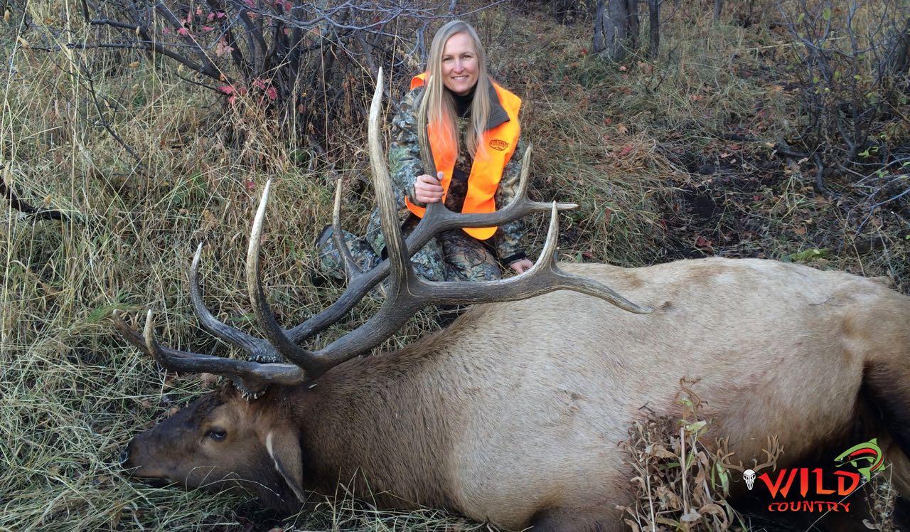 2016-state-bull-elk-deseret- 4.jpg