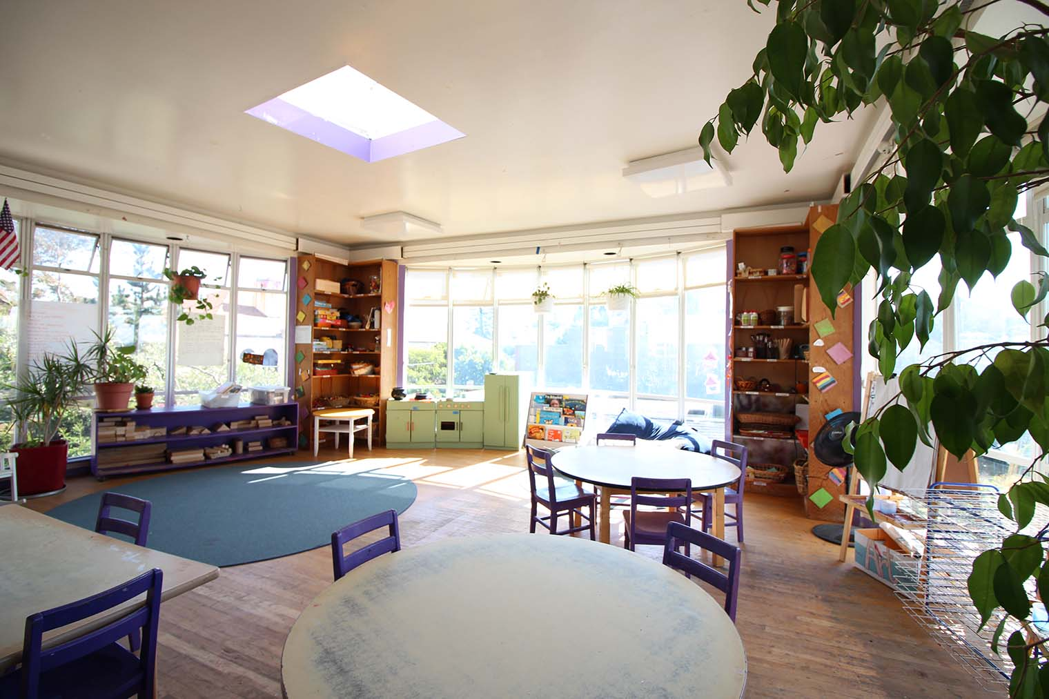 purple-room.JPG