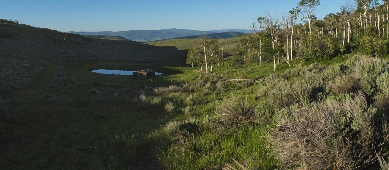Colorado D1.jpg
