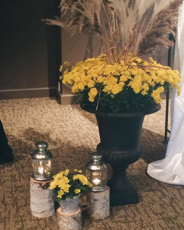 Fall Mums with Birch Stumps and Lanterns | Tall Girl Meets World